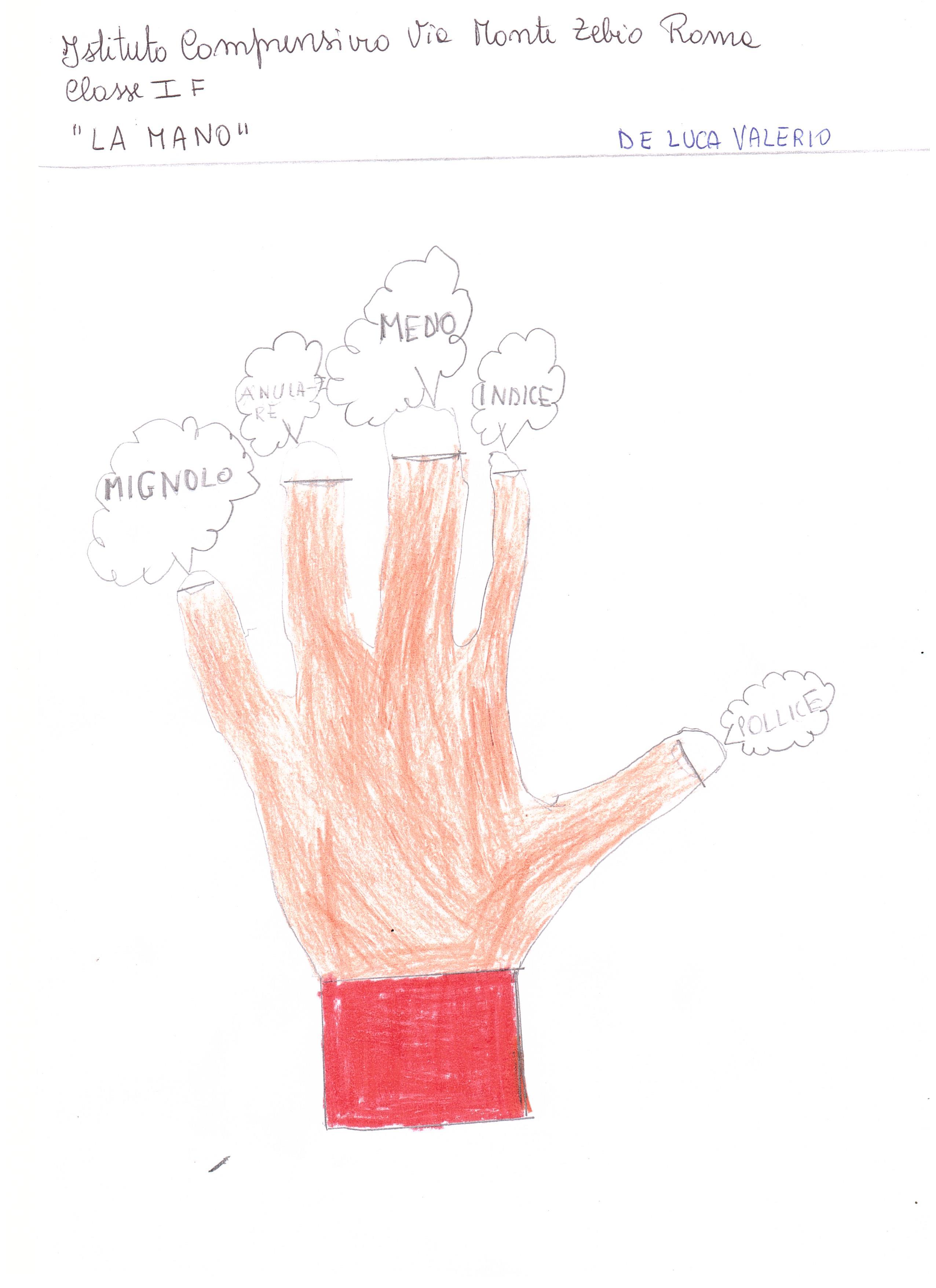 La mano  (5)